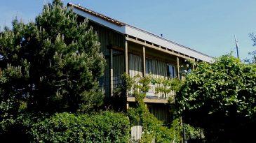 Holzhaus in Skelettbauweise.